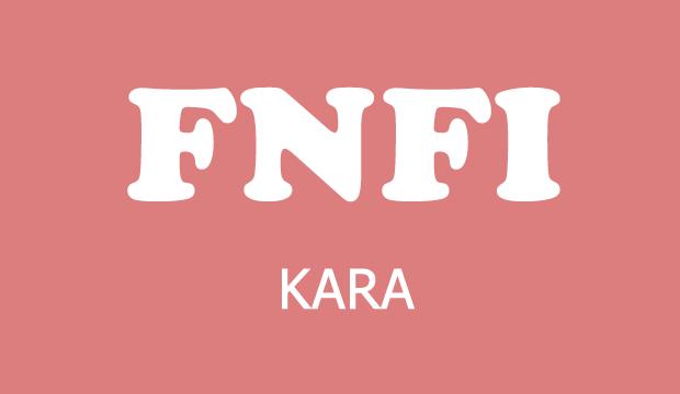 fnfi kara