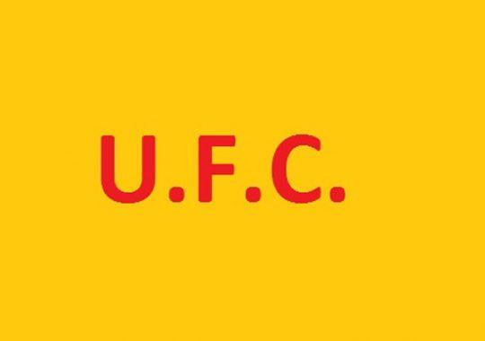 Togo : L'UFC ne mise que sur la paix
