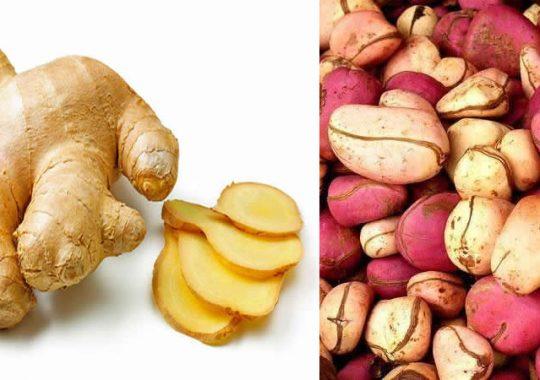 Santé sexuelle : Découvrez les vertus aphrodisiaque de la noix de cola et du gingembre