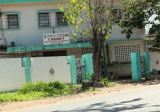 Togo: Journée porte ouverte au ministère de l'agriculture, de l'élevage et de l'hydraulique