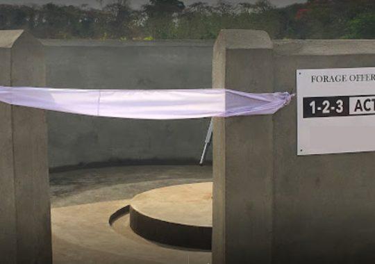 L'ONG 1-2-3 Action fait jaillir l'eau dans le village de Kpegadje