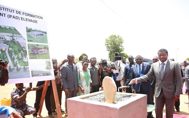 Faure Gnassingbé lance les travaux de l'IFAD de Barkoissi