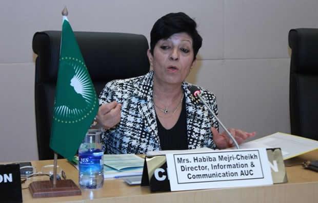 Togo: Réunion / Conseil Economique Social de l'Union Africaine