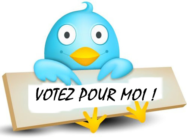 campagne electorale togo