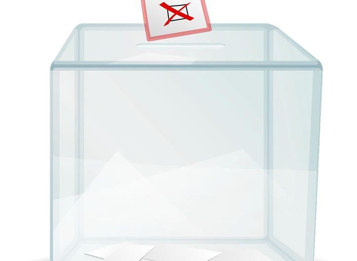 Sondage élection présidentielle 2015 au Togo