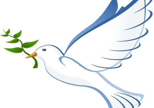 Togo : Célébration de la paix et sécurité pour la dignité humaine