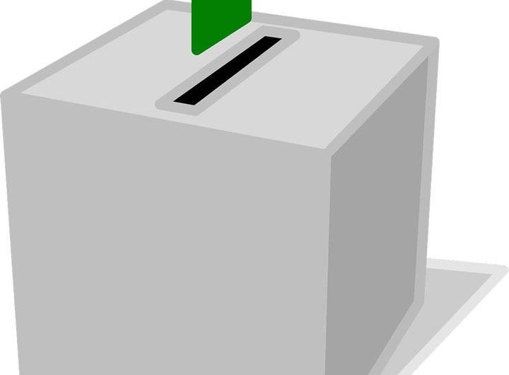 Élection au Togo : la collecte des résultats se fera par « Succès »
