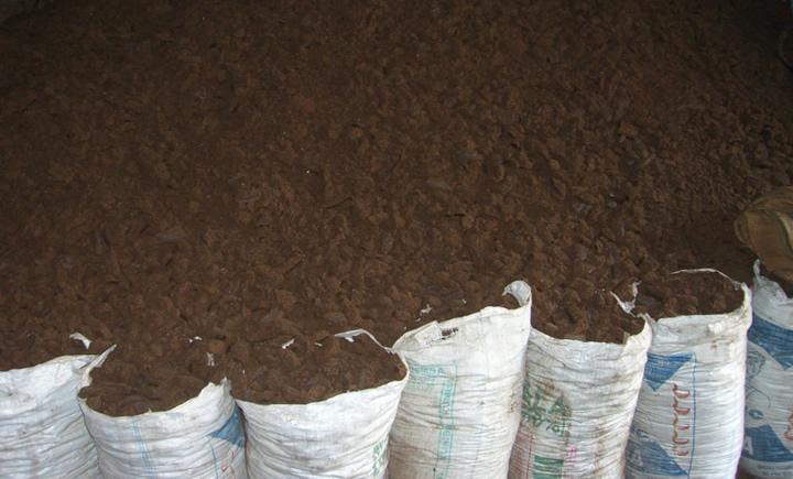 Une usine de production d'engrais au Togo