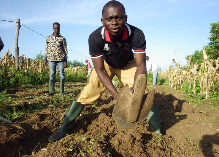 La jeunesse togolaise et l'entrepreneuriat rural