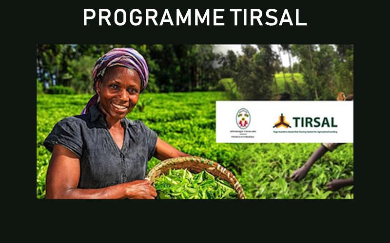 Togo:  Le mécanisme TIRSAL expliqué aux acteurs du secteur agricole
