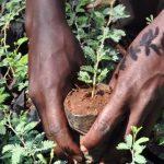La date du 1er juin commémorée au Togo