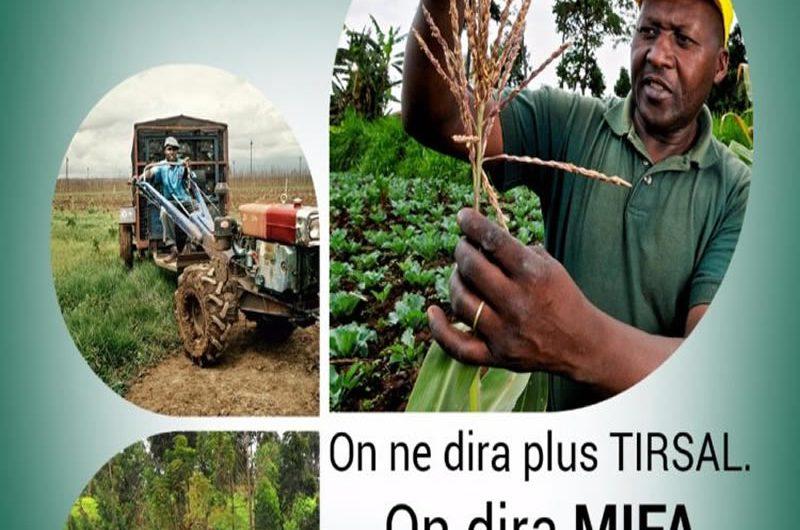 Agriculture : Lancement du MIFA ce lundi 25 juin