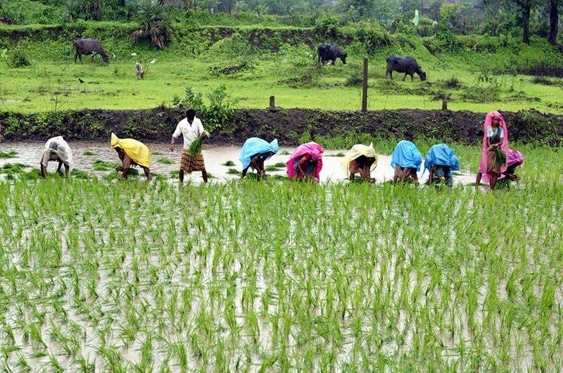 A Lomé, le CILSS clôture sa concertation régionale