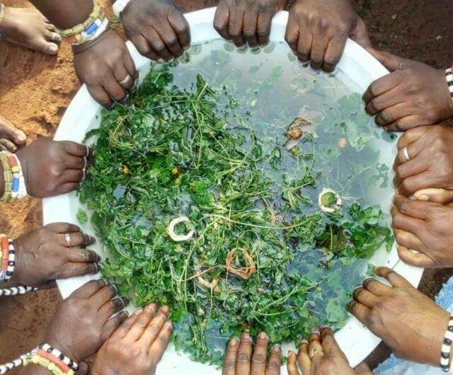 Togo: Prise de la pierre sacrée en pays Guin