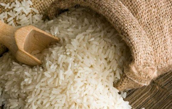 Polémique sur le riz birman : Ce que révèlent les laboratoires du Togo