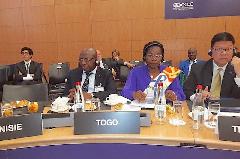Le Togo représenté à la 5ème édition de la réunion du centre de développement de l'OCDE.