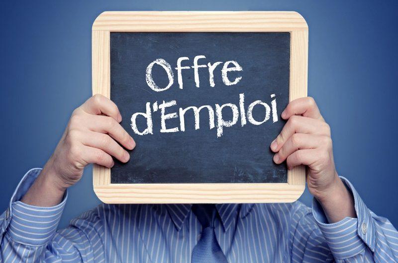 Togo: l'ANPE recrute pour ces postes(14 septembre 2020).