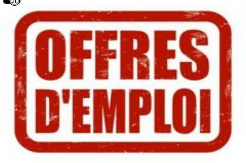 Togo: l'ANPE recrute pour ces différents postes(26 Août 2020).