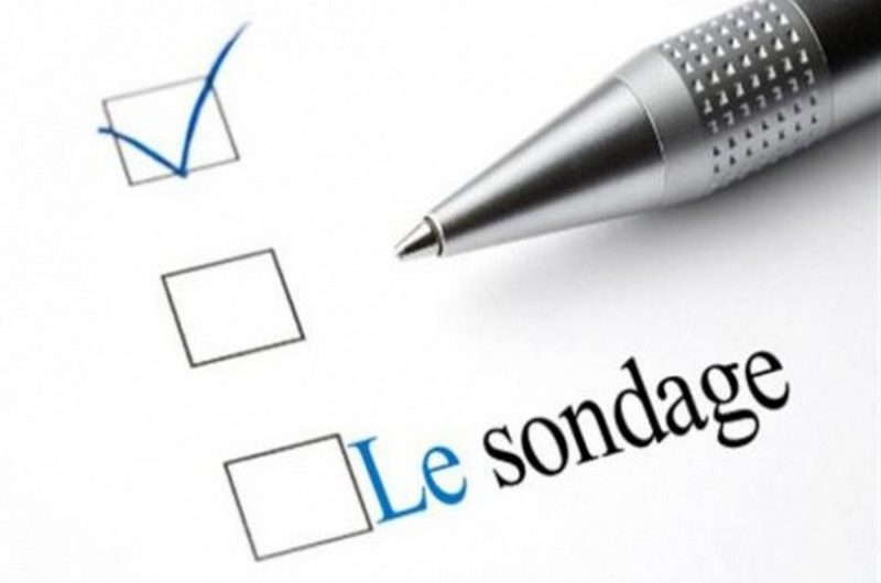 Togo: 84% des Togolais pensent globalement que la démocratie fonctionne bien.
