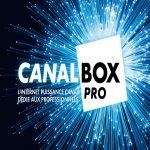 Togo: CanalBox  a enregistré un chiffre d'affaires de 1,2 milliards en 2019.