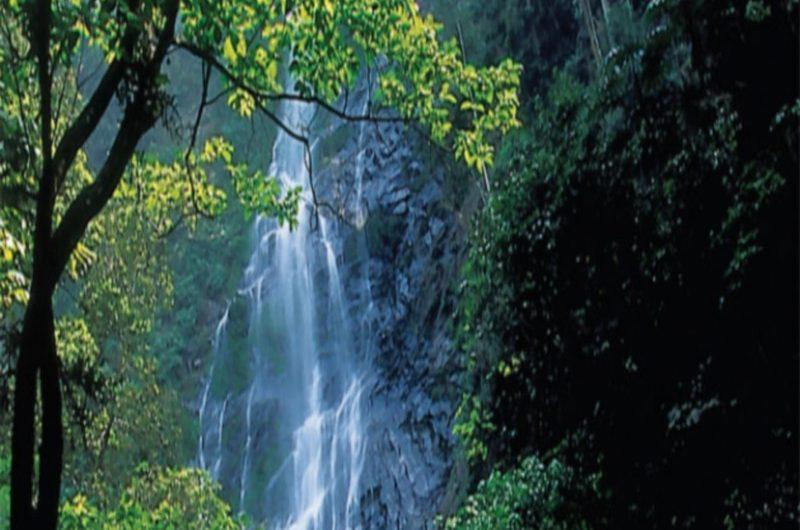 Togo: un projet de site éco-tourisme encours de réalisation dans la région des Plateaux à Akébou.
