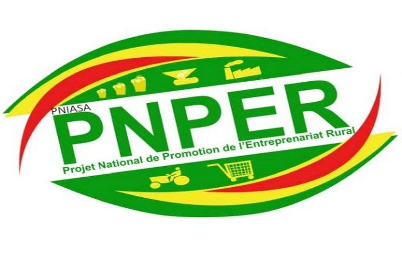 Togo: le gouvernement met fin au PNPER.