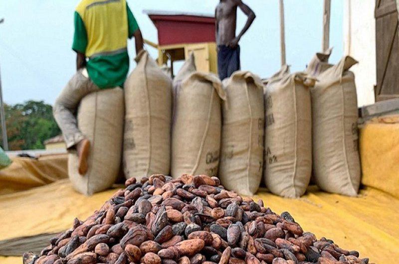 Togo: les commerçants de café-cacao invités à s'enrôler avant le 03 septembre.